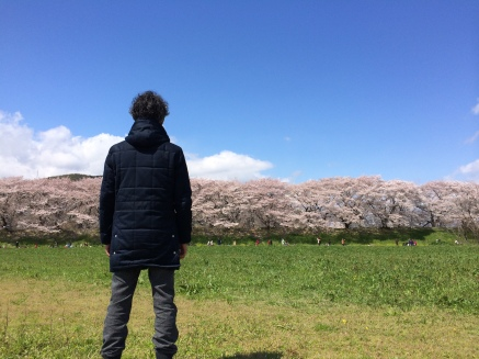 写真 2014-04-06 12 53 56